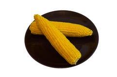 被隔绝的煮沸的玉米棒子 免版税库存照片