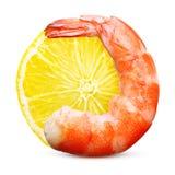 被隔绝的煮熟的虾 免版税库存图片