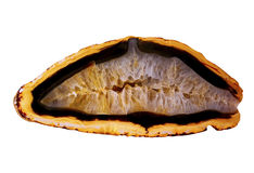 被隔绝的玛瑙geode 库存照片