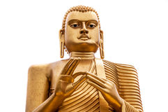 被隔绝的菩萨雕象在科伦坡,斯里兰卡 免版税库存图片