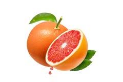 被隔绝的葡萄柚 在白色背景和一半隔绝的一个粉红色葡萄柚,裁减路线 库存照片