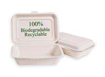 被隔绝的食物的蔗渣箱子 免版税库存图片