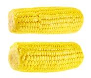 被隔绝的Cornstick玉米棒子 图库摄影