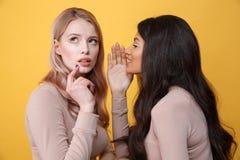 被集中的年轻人两个夫人谈话互相 库存图片
