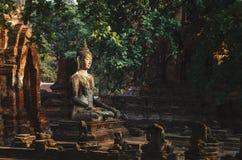 被雕刻的石菩萨雕象围拢与热带植被 图库摄影