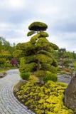 被雕刻的庭院, Frjaere,斯塔万格,挪威的弗洛尔 免版税库存照片
