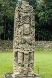 被雕刻的玛雅史特拉, Copan废墟,洪都拉斯 库存图片