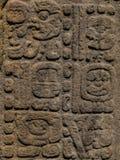 被雕刻的玛雅石头, Quirigua废墟,危地马拉 库存图片