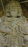 被雕刻的玛雅石头, Quirigua废墟,危地马拉 库存照片