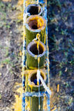 被雕刻的要素蜡烛 免版税库存图片
