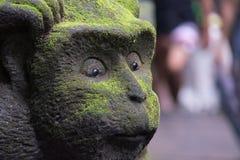 被雕刻的猴子特写镜头 库存照片