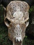 被雕刻的水牛头骨装饰 免版税库存图片