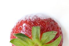 被鞭打的奶油色草莓 免版税库存照片