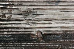 被风化的木头 免版税库存照片