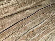 被风化的木材 免版税图库摄影