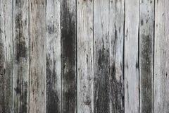 被风化的木板条背景纹理 库存图片