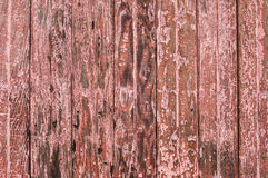 被风化的木纹理 库存照片