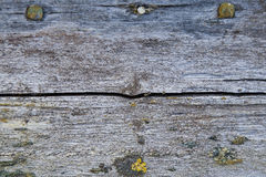 被风化的木背景纹理 免版税库存照片