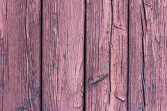 被风化的木衬里纹理上与剥紫罗兰色油漆和生锈的钉子头 装饰图案 免版税库存照片