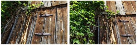 被风化的毂仓大门取决于藤拼贴画 库存照片