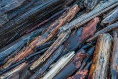 被风化的漂流木头 免版税库存照片