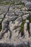 被风化的石灰石malham 免版税库存照片