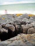 被风化的码头特写镜头在Climping的在南英国 免版税图库摄影