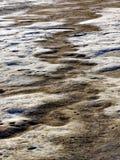 被风化的砂岩岩石露出 库存照片