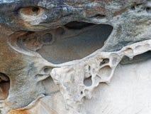 被风化的砂岩样式,悉尼,澳大利亚 免版税图库摄影