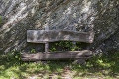 被风化的老树银行对岩石墙壁在德国的森林里 免版税图库摄影