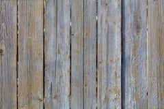 被风化的老灰色木篱芭纹理  库存图片