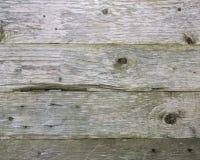 被风化的老灰色杉木板条背景  库存照片