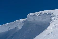 被风吹弯曲的雪土坎在冬天阳光下 免版税库存图片
