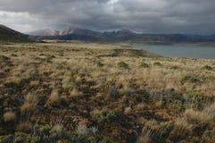 被风吹扫偏僻的巴塔哥尼亚 图库摄影