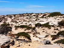 被风吹扫和坚固性Formby海湾 免版税库存图片