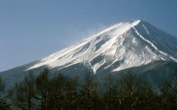 被风吹扫富士的挂接 免版税库存图片
