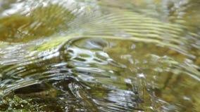 被击中岩石和起波纹的水流动在河 股票视频
