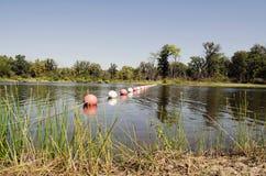 被系住的游泳的区域 免版税库存图片