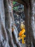 被破坏的和古老佛教寺庙 库存照片
