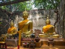 被破坏的和古老佛教寺庙 免版税库存图片