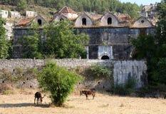 被破坏的希腊东正教在Kayakoy Turke鬼城  免版税库存照片