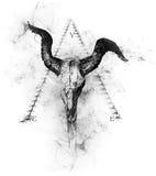 被说明的公牛头骨有金字塔背景 免版税图库摄影