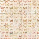 被说明的古色古香的水彩蝴蝶仿造了背景 向量例证