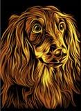 被说明的狗画象 免版税库存图片