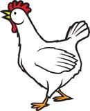 鸡5 免版税库存照片