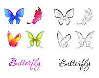 被说明的蝴蝶的汇集。上色 图库摄影