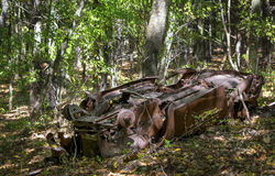 被击毁的汽车在森林 免版税库存照片