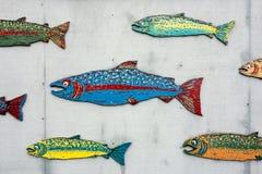 被绘的三文鱼学校  免版税图库摄影
