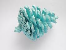 被绘的北极蓝色颜色杉木锥体 免版税库存图片