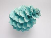 被绘的北极蓝色颜色杉木锥体 免版税库存照片